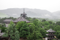 奈良市 興福寺 春日山
