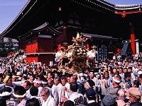 東京都 三社祭神輿渡御