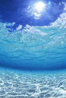 海底から見上げた水面