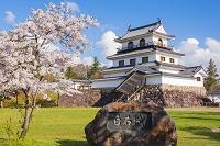 宮城県 桜と白石城