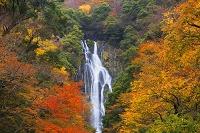 岡山県 神庭の滝