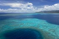 沖縄県 西表島 サンゴ礁