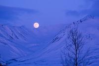 アメリカ合衆国 アラスカ山脈に浮かぶ満月