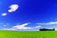 緑の草原の丘と雲流れる青空