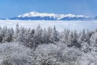 長野県 霧氷の林と乗鞍岳