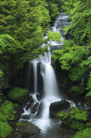 栃木県 日光市 竜頭の滝