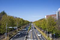 茨城県 つくば市 筑波研究学園都市