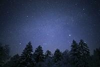 北海道 森と星空