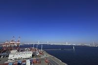 横浜港 本牧埠頭のコンテナターミナルとベイブリッジ