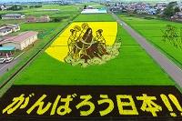 青森県 田んぼアート