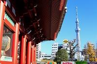 台東区 浅草の宝蔵門とスカイツリー