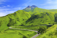 大分県 狭霧台展望所より望む新緑の由布岳