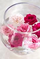 水に浮かぶバラの花
