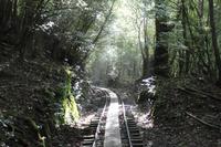 鹿児島県 縄文杉へのトロッコ道