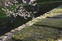 福岡県 杉の馬場の瓦坂