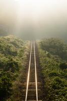 島根県 JR木次線 朝日に輝く線路