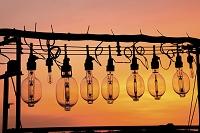 青森県 イカ釣り漁船ランプ