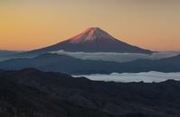 山梨県 大菩薩峠より早朝の富士山を望む