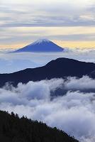 静岡県 富士見平 富士山と雲海の山並み