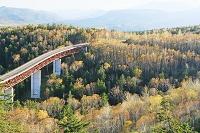 北海道 三国峠の紅葉と松見橋