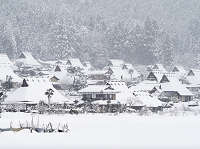 京都府 雪降るかやぶきの里北村