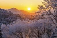長野県 聖高原の日の出