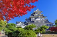 岡山県 紅葉の岡山城