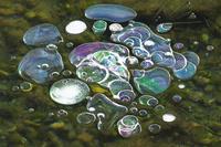 北海道 屈斜路湖のアイスバブル