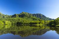 長野県 鏡池に映る新緑の戸隠連山