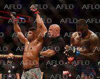 総合格闘技 UFC ファイトナイト