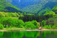 新潟県 湯沢町 初夏の大源太湖