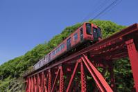 奈良県 南海 真田赤備え列車