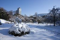 東京都 小石川後楽園 雪
