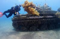 ヨルダン 紅海 沈んだ戦車