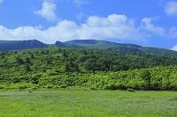 秋田県 東成瀬村 栗駒高原の湿原