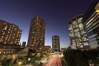 東京都 豊洲の晴海通りの夜景