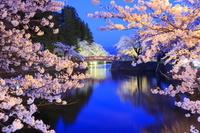 山形県 米沢市 松が岬公園(米沢城址) 菱門橋と夜桜