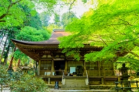 奈良県 室生寺 本堂