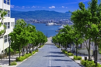 北海道 函館 八幡坂