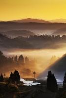新潟県 朝霧と棚田