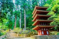 奈良県 室生寺 五重塔