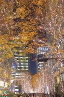 東京都 丸の内のイルミネーション