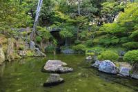 和歌山県 和歌山城 紅葉渓庭園
