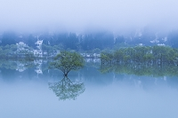 山形県 白川ダム湖