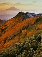 山梨県 観音岳 夜明けの富士山と紅葉の山並み