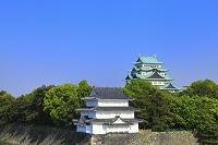 愛知県 名古屋城 大天守閣と清洲櫓