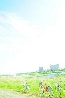東京都 多摩川の岸辺と自転車