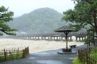 京都府 平成30年7月豪雨 桂川増水
