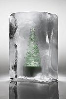 氷に閉じ込められたクリスマスツリー