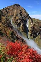 富山県 奥大日岳紅葉